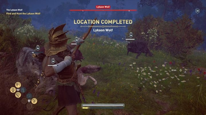 This is a typical fight where you face a lot of enemies - The Lykaon Wolf (Lakonia) - Hunting for Seven Beasts in Assassins Creed Odyssey - Hunting for Seven Beasts - Assassins Creed Odyssey Guide