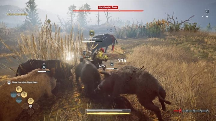 From time to time, the enemy will summon a horde of minor wild boars to help him in the battle - Kalydonian Boar (Phokis) - Hunting for Seven Beasts in Assassins Creed Odyssey - Hunting for Seven Beasts - Assassins Creed Odyssey Guide