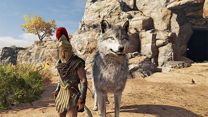 In order to tame a predator, you must weaken it sufficiently during the fight and stun it - Can I tame a pet in Assassins Creed Odyssey? - FAQ - Assassins Creed Odyssey Guide