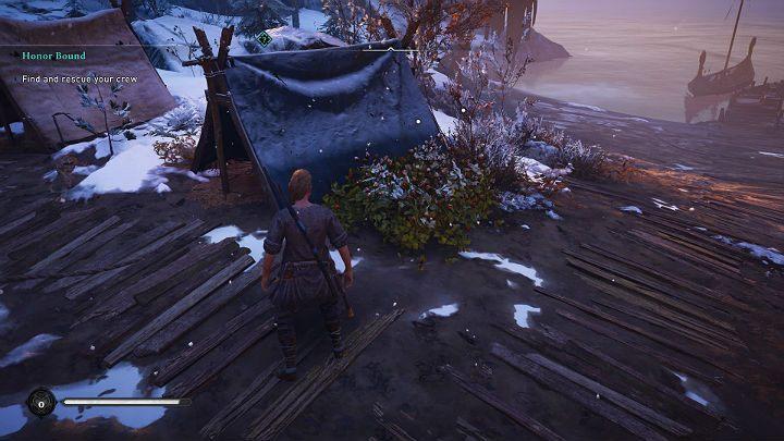 Остановитесь у палаток, чтобы собрать фрукты, растущие в кустах, которые могут восстановить часть утраченного здоровья - прохождение Assassins Creed Valhalla: Honor Bound - Rygjafylke - Assassins Creed Valhalla Guide