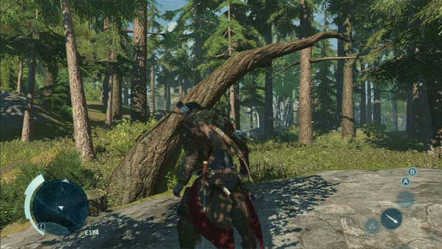 Forest climbing paths usually begin with fallen trees - Climbing trees - Exploration - Assassins Creed III - Game Guide and Walkthrough