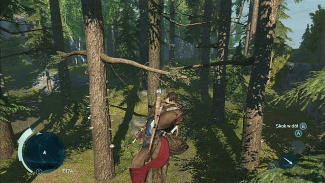 A new addition to Assassin's Creed III are big and vast forests - Climbing trees - Exploration - Assassins Creed III - Game Guide and Walkthrough