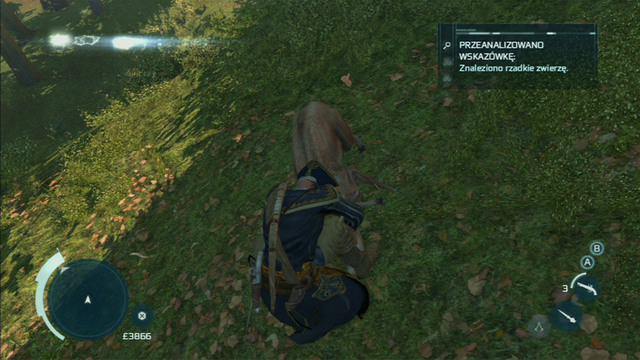 Wait for it to approach the branch you're on and jump onto it with a hidden blade - The Hunting Society - Guild missions - Assassins Creed III - Game Guide and Walkthrough