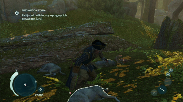 Kill three wolves to lure out their leader - The Hunting Society - Guild missions - Assassins Creed III - Game Guide and Walkthrough