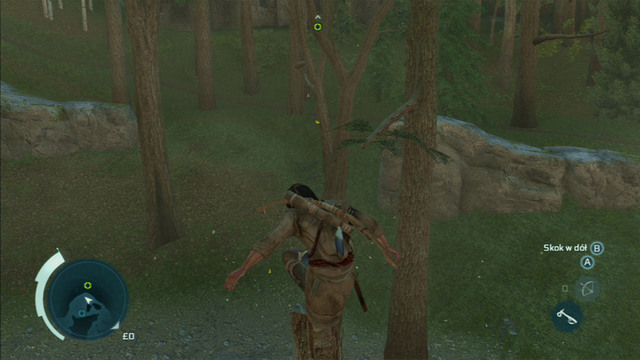 Save him and afterwards jump to the tree forming a V growing on the other side of the water - Sequence 4 - Feathers and Trees - Walkthrough - Assassins Creed III - Game Guide and Walkthrough