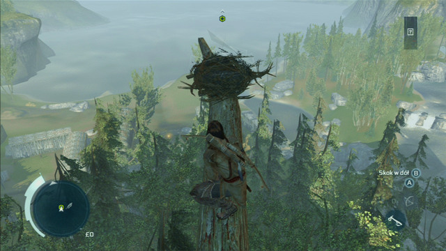 At the top, approach the marked nest and press the interaction button - Sequence 4 - Feathers and Trees - Walkthrough - Assassins Creed III - Game Guide and Walkthrough