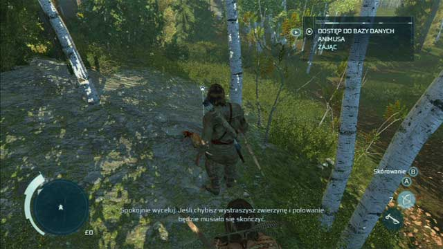 Kill one of the animals by holding down and then releasing the shoot button and afterwards skin it with the interaction button - Sequence 4 - Hunting Lessons - Walkthrough - Assassins Creed III - Game Guide and Walkthrough