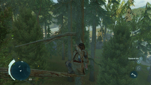 The item you seek is lying on one of its branches - Sequence 4 - Feathers and Trees | Assassins Creed III Remastered Walkthrough - Walkthrough - Assassins Creed III Game Guide & Walkthrough