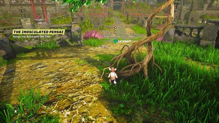 Идите в указанное место и взаимодействуйте с деревом - Биомутант: Другой мир - прохождение - Основные квесты - Руководство по биомутантам