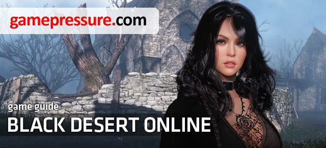 Black Desert Online is a game developed by the Korean-Based Pearl Abyss, which can boast somewhat unusual graphics - Black Desert Online - Game Guide and Walkthrough