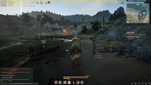 There are various was to develop your character - Character development - Main character - Black Desert Online - Game Guide and Walkthrough