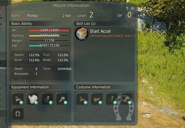 Levels and equipment | Mounts - Black Desert Online Game