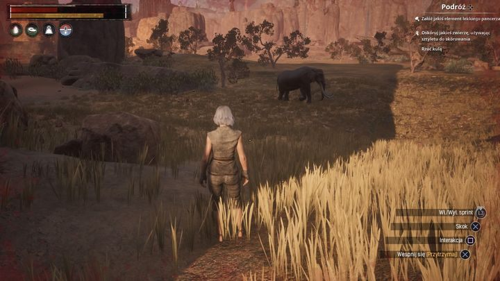 Try to avoid larger animals in the beginning of the game. - Things you shouldnt do in Conan Exiles | Starting Tips | Conan Exiles - Starting Tips - Conan Exiles Game Guide