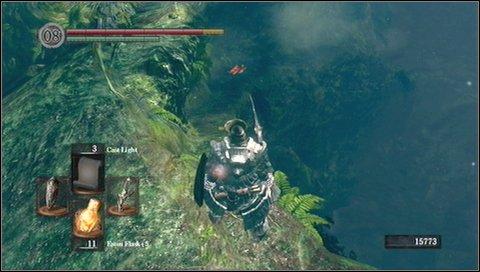 Darkroot Basin Walkthrough Dark Souls Game Guide Walkthrough