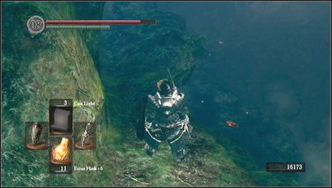 It is best to go to the rocky ledge on the left - Darkroot Basin - Walkthrough - Dark Souls - Game Guide and Walkthrough