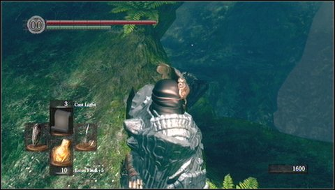 Below you'll find an item - Grass Crest Shield - Darkroot Basin - Walkthrough - Dark Souls - Game Guide and Walkthrough