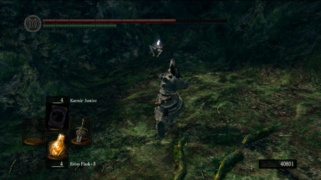An item around the meadow - Royal Wood - Artorias Of The Abyss - walkthrough - Dark Souls - Game Guide and Walkthrough