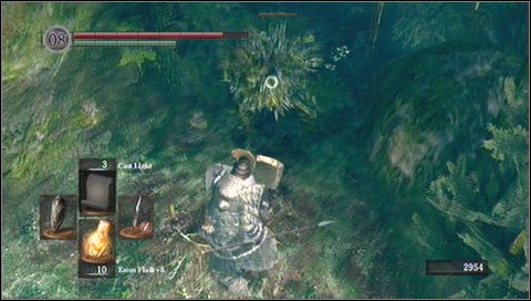 After killing the first plant, run forward - Darkroot Garden - p. 1 - Walkthrough - Dark Souls - Game Guide and Walkthrough