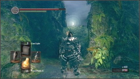 Go forward, in a direction where your second enemy was coming from - Darkroot Garden - p. 1 - Walkthrough - Dark Souls - Game Guide and Walkthrough