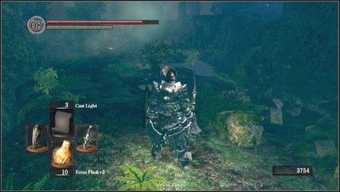 Darkroot Garden - p. 1 | Walkthrough - Dark Souls Game Guide ...