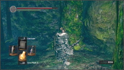 Go down with a side corridor and remove another tree on your way - Darkroot Garden - p. 1 - Walkthrough - Dark Souls - Game Guide and Walkthrough