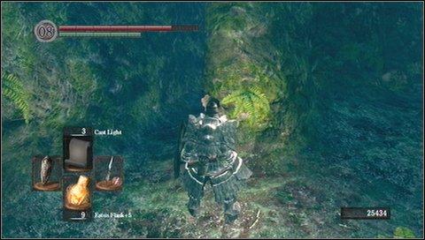 darkroot garden p 2 walkthrough dark souls game guide