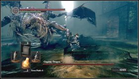 Run to the arena and observe the demon - Gaping Dragon - How to kill a boss - Dark Souls - Game Guide and Walkthrough