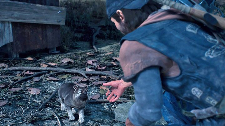 Can you pet the dog in Days Gone? - Days Gone Guide | gamepressure com