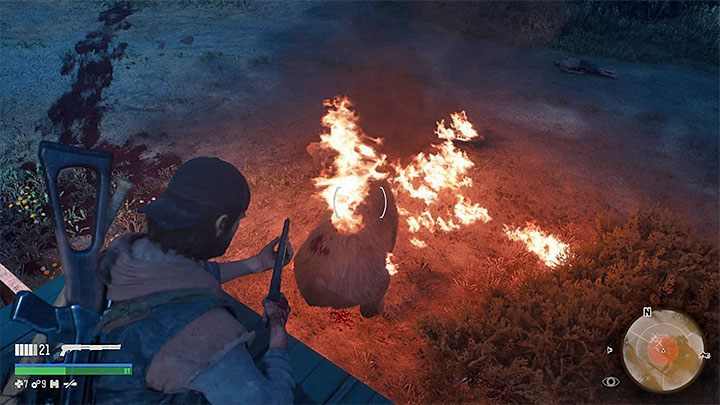 Bears can also occur in further parts of the game but they will not have any special health bars - How to kill the bear boss in the Lots of Sick People mission in Days Gone? - FAQ - Days Gone Guide