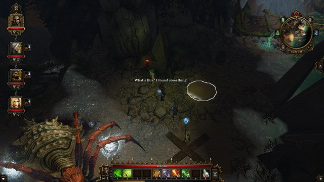 Divinity Orginal Sin  Black Cat