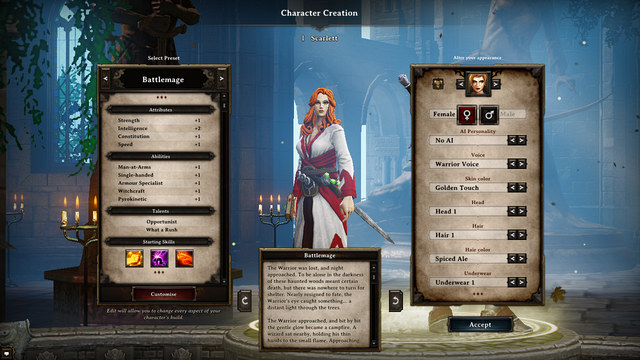 Selecting of base categories - How To Develop The Character - Character - Divinity: Original Sin Game Guide