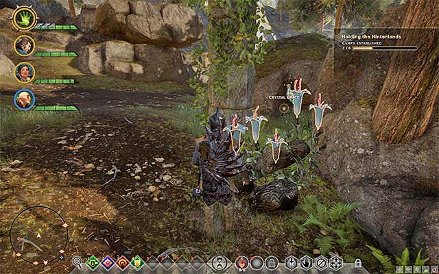 An example herb - Herbs - Crafting - Dragon Age: Inquisition Game Guide & Walkthrough