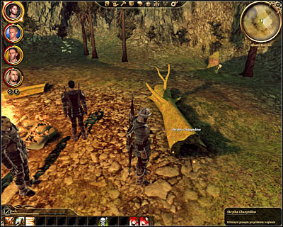 The game will now inform you that you've been able to figure out where to look for the treasure - Korcari wilds - Sign on the Chasind trail - Korcari wilds - Dragon Age: Origins - Game Guide and Walkthrough