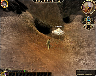 Start off by transforming yourself into a mouse and use a nearby mouse hole to travel to a different location - Lost in dreams - Main quests - Dragon Age: Origins - Game Guide and Walkthrough