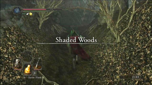 Madeiras sombreadas - Sombreado madeiras - Detonado - Dark Souls II - Guia do Jogo e Passo a passo