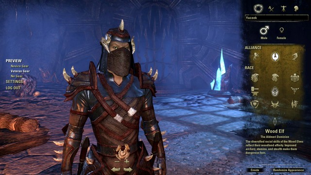 Character creation in ESO - 1. The Hero - The Elder Scrolls Online in 10 Easy Steps - The Elder Scrolls Online Game Guide