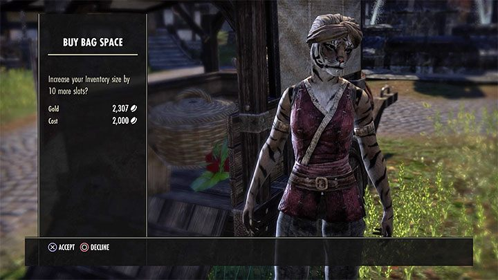 Eso Inventory How To Expand It The Elder Scrolls Online Guide Gamepressure Com