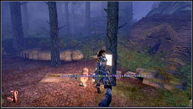 Head to Silverpines in search of the thieves - Royal Schedule - p. 2 - Walkthrough - Fable III - Game Guide and Walkthrough