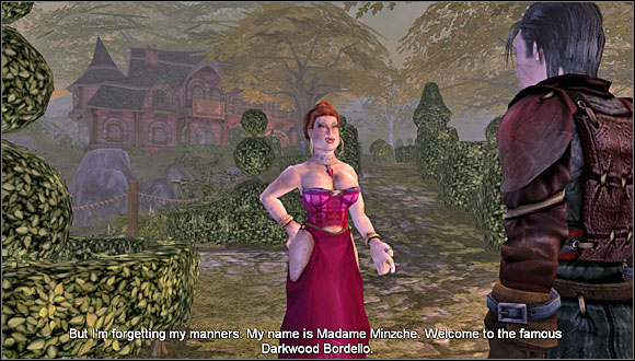 You have to get laid with the owner of the bordello - Darkwood Bordello - Bronze quests - Fable: The Lost Chapters - Game Guide and Walkthrough