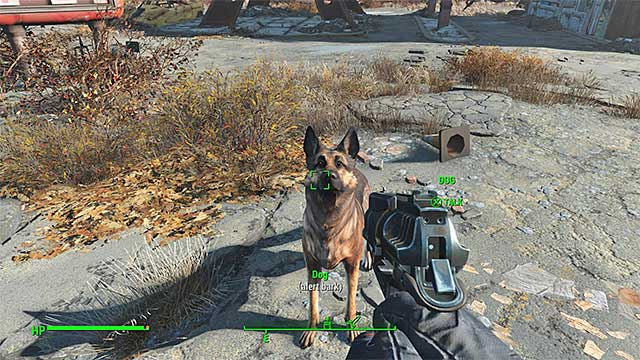 Find the dog and talk to the animal - How to add Dogmeat as a companion? - FAQ - Frequently asked questions - Fallout 4 Game Guide & Walkthrough