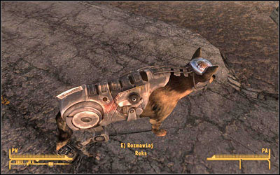 nothing but a hound dog fallout