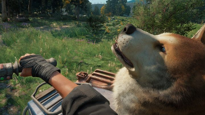 Commentary: After unlocking the dog Timber as a gun for hire, you must drive with him for five minutes in the sidecar - Trophies and Achievements in Far Cry New Dawn - Achievements - Far Cry New Dawn Guide