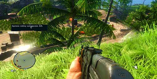 When you are at the further crops, you should also remain on the hillock to the right - Kick the Hornet's Nest - Main missions - Far Cry 3 - Game Guide and Walkthrough