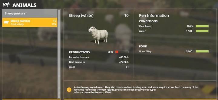 Sheep | Husbandry in Farming Simulator 19 - Farming