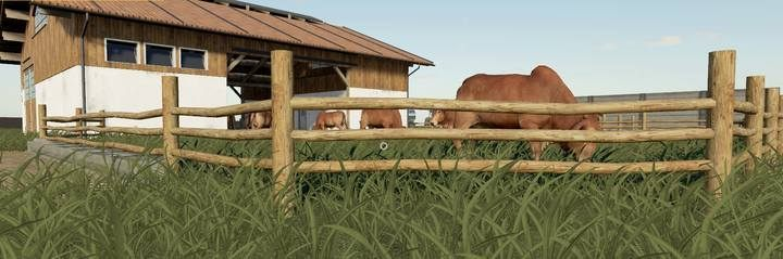 Cows | Husbandry in Farming Simulator 19 - Farming Simulator