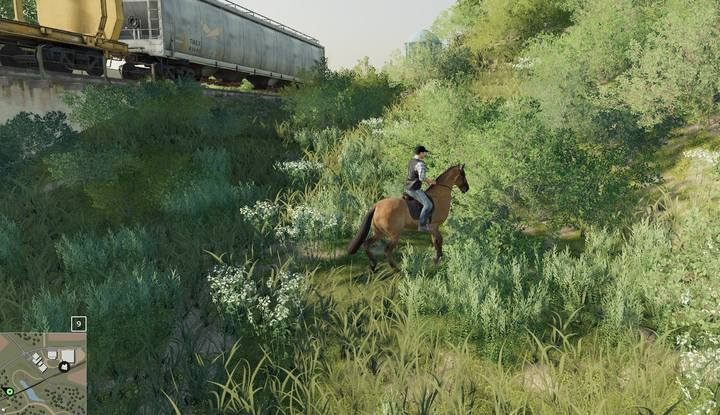 Treat horseback riding as a necessity/entertainment or look after other investments and fields during this time. - Horses | Husbandry in Farming Simulator 19 - Husbandry - Farming Simulator 19 Guide and Tips
