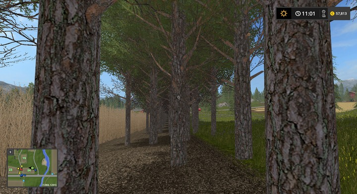 Planting Trees and Poplars - Farming Simulator 17 Game Guide