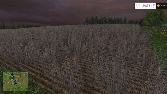 Plants that are left on the field for too long will wither. - Comparison - Plants - Farming Simulator 15 Game Guide