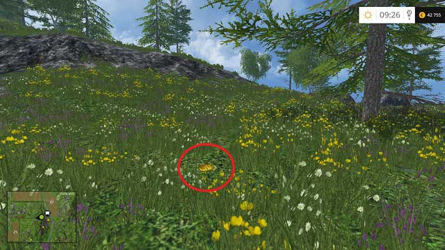 In the grass, near a tree - Section D - coins 45 - 54 - Gold Coins - Farming Simulator 15 Game Guide