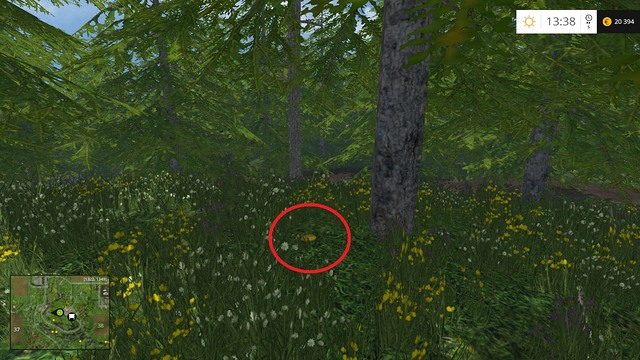 In the grass, under a tree - Section F - coins 70 - 89 - Gold Coins - Farming Simulator 15 Game Guide